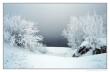 Книга 31 декабря сказка стучится во все двери                         (СИ) автора Наталья Амарий