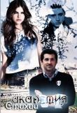 Книга Академия Стихий (СИ) автора West Selena