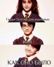 Обложка: Гарри Поттер для взрослых или КАК ОНО БЫЛО (СИ)