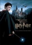 Книга Гарри Поттер и Враг Сокола автора Danielle Collinerouge