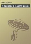 Книга К вопросу о смысле жизни автора Павел Шумилов