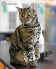 Книга Коты и кошки автора авторов Коллектив
