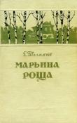 Книга Марьина роща автора Евгений Толкачев