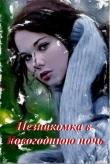 Книга Незнакомка в новогоднюю ночь (СИ) автора Григорий Жадько