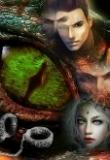 Обложка: Оковы Амайнаны (СИ)