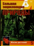 Книга Т. 5. Жизнь растений. Водоросли. Лишайники. Мхи автора С. Бердышев