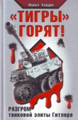 Книга «Тигры» горят! автора Мартин Кэйдин
