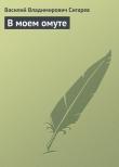 Книга В моем омуте автора Василий Сигарев