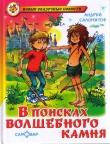 Книга В поисках волшебного камня (Черный камень) автора Андрей Саломатов