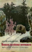 Книга Вовка - зелёная фуражка автора Андрей Шманкевич