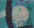 Книга Яблоневый цвет автора Наталья Чернышева