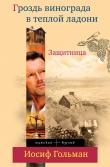 Книга Защитница. Любовь, ненависть и белые ночи автора Иосиф Гольман