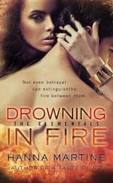 скачать книгу Drowning in Fire автора Hanna Martine
