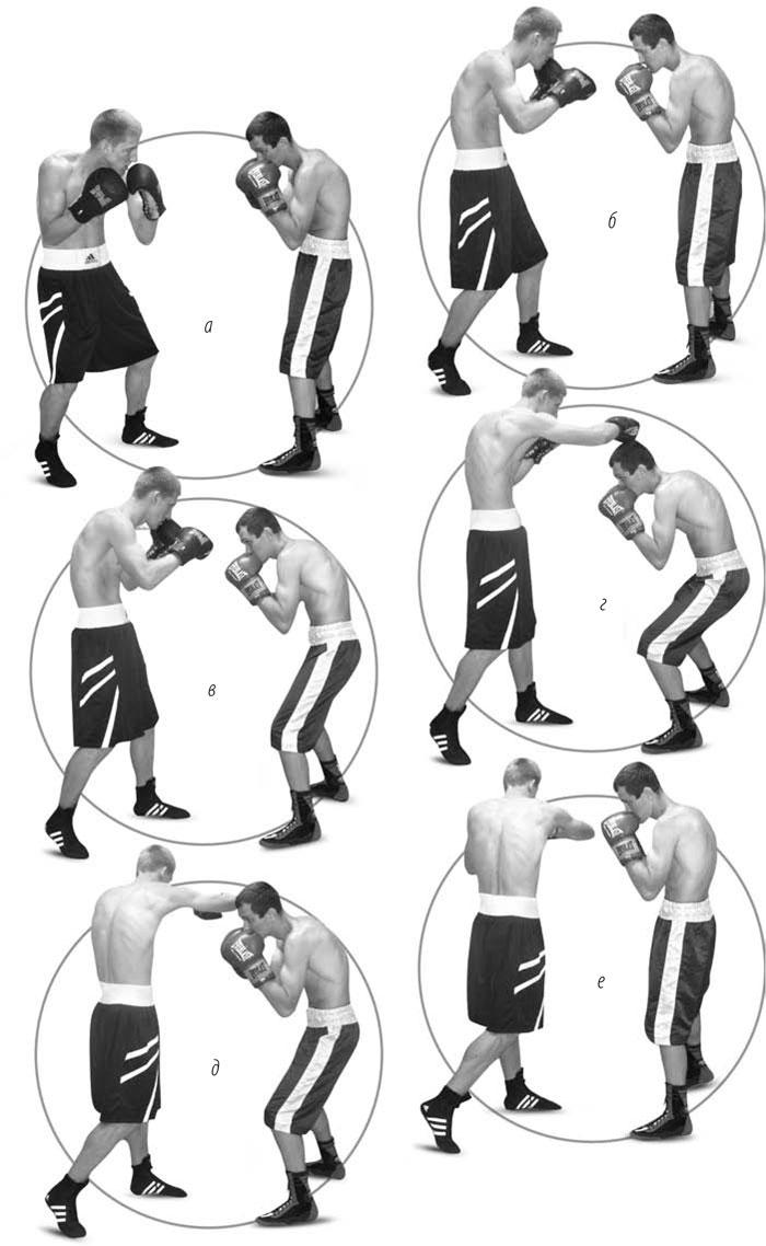 движение бокса картинки этого будут