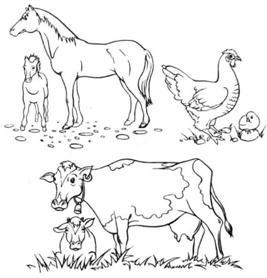 привычную картинки задания по теме домашние животные и их детеныши было только представлено