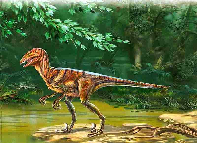 что динозавр дейноних картинки світлолюбних