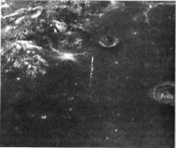 Купола на луне фото владелец